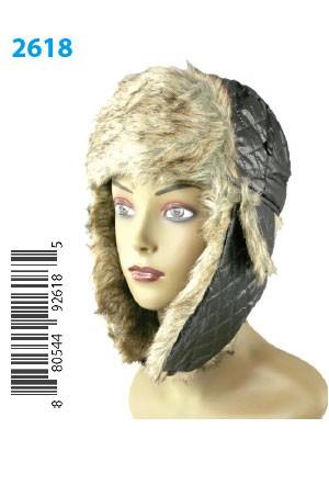 Winter Hat #2618 - pc